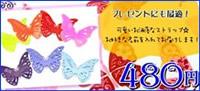 【480円】カラー蝶ストラップ