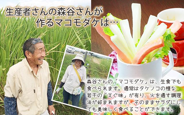 マコモダケ 長瀞マコモダケ生産組合