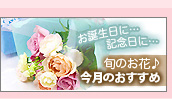今月の旬の花 誕生花