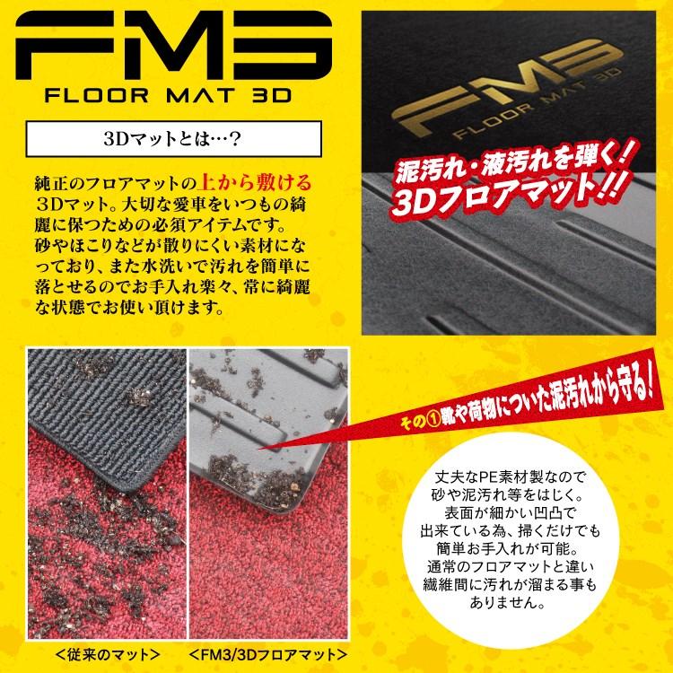 fm3_lp_02.jpg
