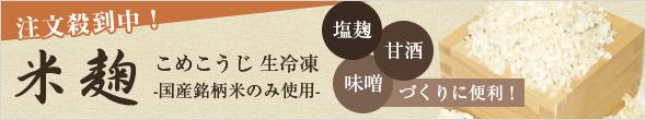 米麹(こめこうじ)