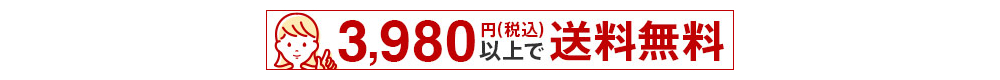 3,980円以上送料無料
