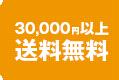 30000以上送料無料