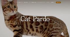 ベンガル猫専門|CatPardo