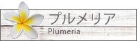 プルメリア