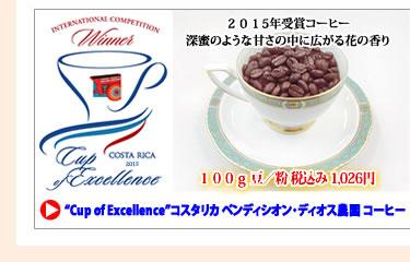 カップオブエクセレンス/Cup Of Excellence コスタリカ ベンディシオン ディオス農園 コーヒー (珈琲 豆/粉)100g