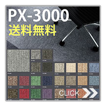 PX-3000