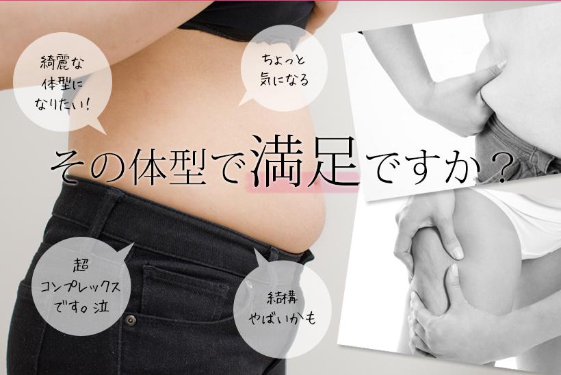 頑固な脂肪セルライト 除去!部分痩せ/ダイエット/痩身/エステ/溶解/分解/撃退【送料無料1年保証付き】
