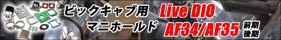 ライブDIO用ビックインテークマニホールド