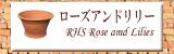 RHS���?��������ɡ���