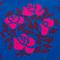 Bouquet de Rose(バラ)