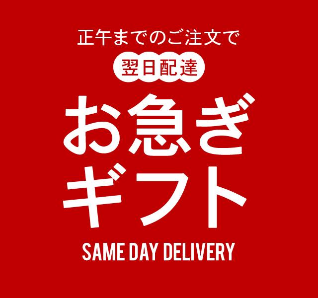 正午までのご注文は翌日お届け!...