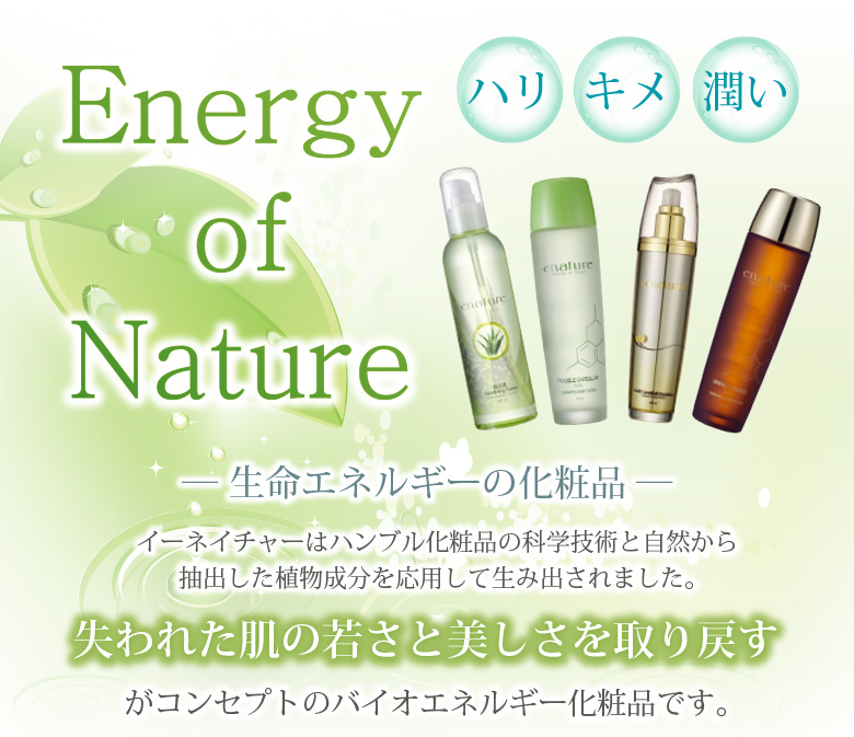 Energy of Nature