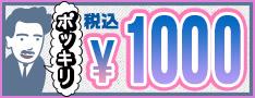 税込1000円ポッキリ。