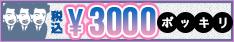 税込3000円ポッキリ。