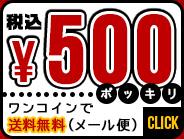 税込500円ポッキリ。ワンコインでご購入。