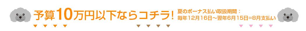 予算10万円以下ならコチラ!夏のボーナス払い取扱期間:毎年12月16日〜翌年6月15日=8月支払い