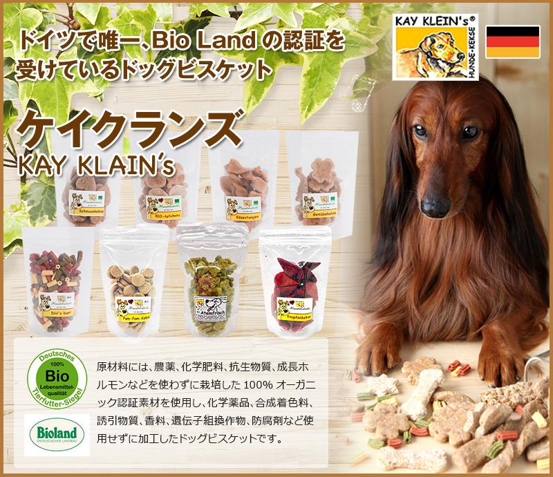 KAY KLEIN'S(ケイクランズ)