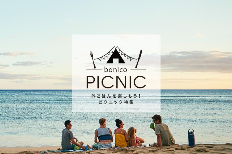 ピクニック特集