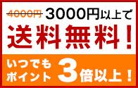 3000円以上で送料無料&いつでもポイント3倍以上!