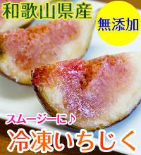 和歌山県産 冷凍いちじく