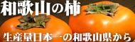 和歌山の柿・富有柿・種なし柿・渋柿