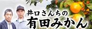 井好園・井口さんの有田みかん