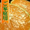 【送料無料:厳選ギフト】武内さんちの有田みかん【産地直送】