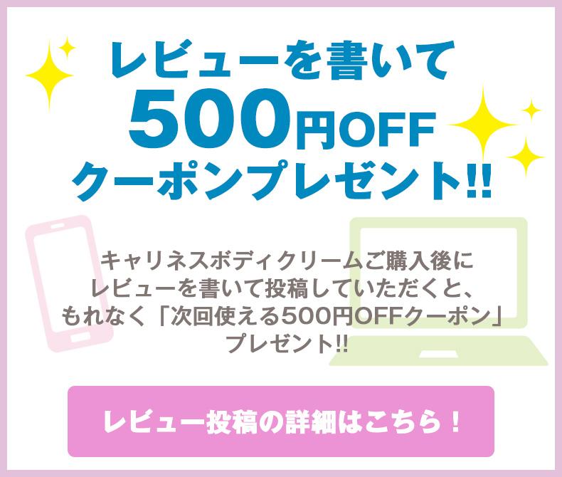 レビューを書いて500円クーポンプレゼント