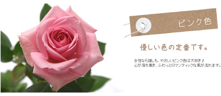 優しい色の定番です。女性なら誰しも、やさしいピンク色は大好き♪心が落ち着き、ふわっとロマンティックな風が流れます。
