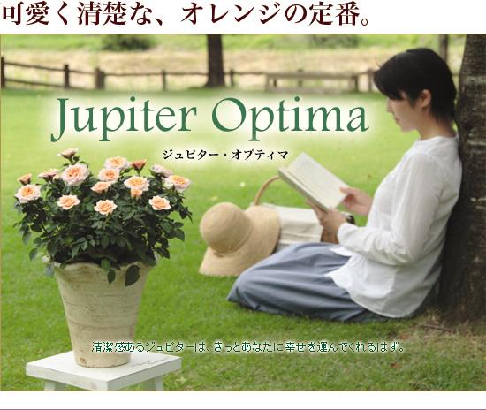 ジュピター・オプティマ