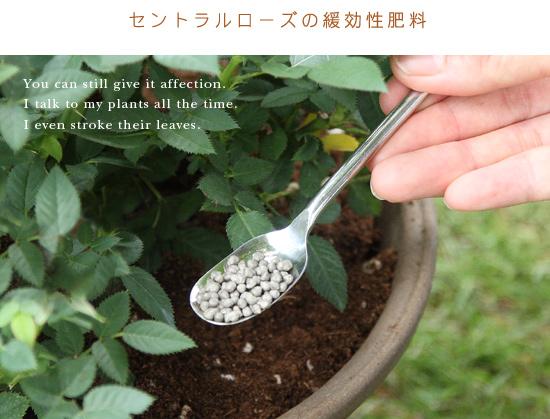 セントラルローズの緩効性肥料