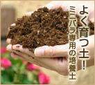 よく育つ土!ミニバラ専用の培養土
