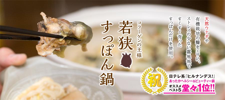 若狭すっぽん鍋