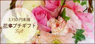 3,150円未満の商品 花・プチギフト
