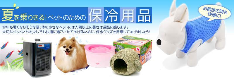 夏を乗りきる!ペットのための保冷用品