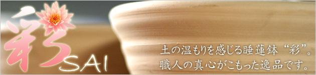 益子焼 睡蓮鉢 彩