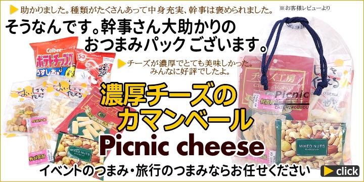 バス旅行に濃厚チーズのピクニックおつまみ詰め合わせ