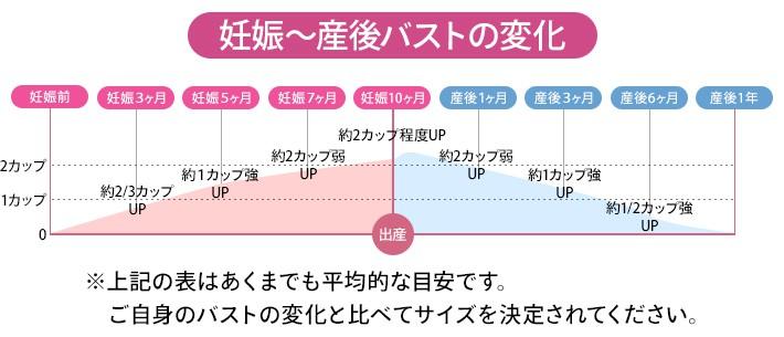 妊娠~産後・バストの変化グラフ