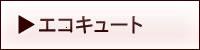 繧ィ繧ウ繧ュ繝・繝シ繝�