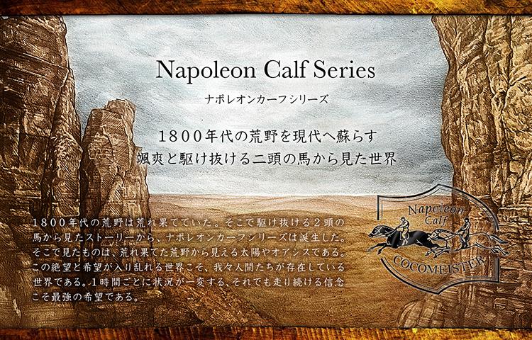 ナポレオンカーフシリーズ