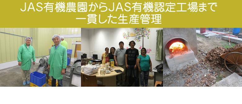 JAS有機認定オーガニック マウンテンバナナ バージンチップ