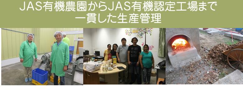 JAS有機認定オーガニック マウンテンココナッツ バージンチップ