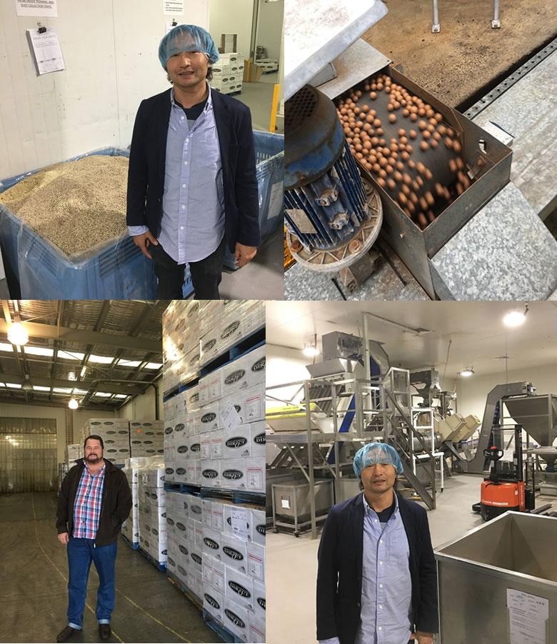 マカダミアナッツオイル 低温圧搾一番搾り オーストラリア産 170g  エキストラバージン
