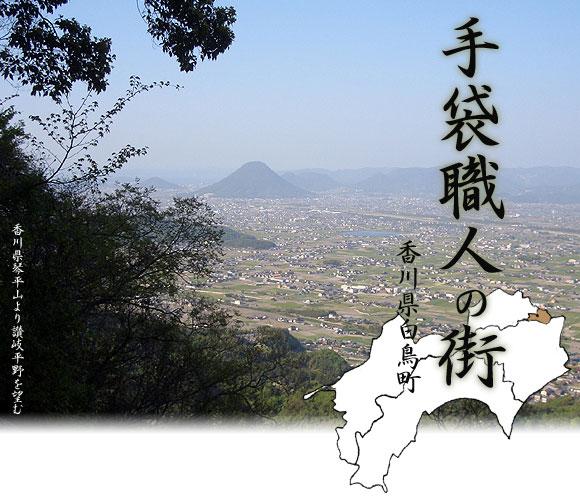 白鳥町(東かがわ市)のグローブ職...