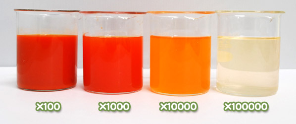 トウガラシ色素・ハイオレンジWA-30の水溶希釈例(100倍〜10万倍)