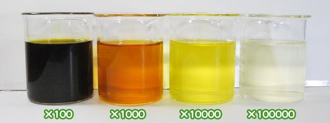 ベニバナ黄色素・サフラワーY1500の水溶希釈例(100倍〜10万倍)
