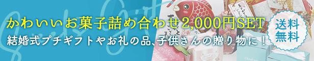 かわいいお菓子の詰合わせ2,000円