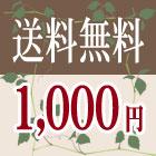 送料無料1000円