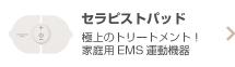 家庭用EMS運動機器セラピストパッド